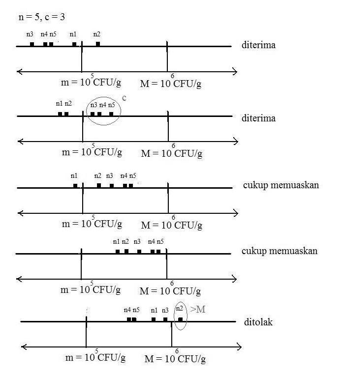 D:\mikrobiologi\artikel karangan dewe\gambar sampling plan\khkfhhfgh.jpg